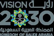 vision-2030